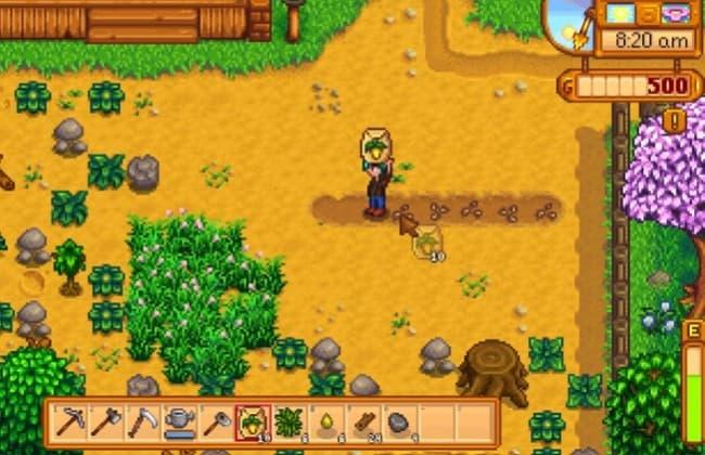 Thực hiện trồng trọt tại Stardew Valley
